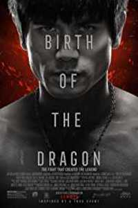 Download Birth of the Dragon (2016) Full Movie In Hindi (Dual Audio) 480p [300MB]
