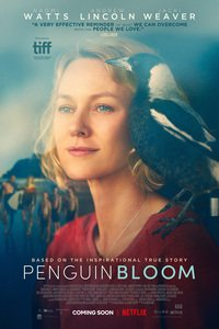 Download Penguin Bloom (2020) Full Movie In {English With Subtitles} 720p [700MB] | 480p [300MB]