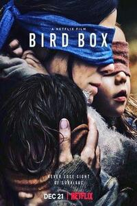Download Netflix Bird Box (2018) Full Movie In Hindi (Dual Audio) 720p [1.1GB] | 480p [390MB]