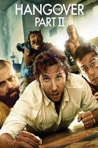 Download The Hangover Part II (2011) Full Movie In Hindi 480p (300MB)