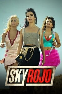 Download Netflix Sky Rojo Season 1 {Hindi – English} 720p [250MB]