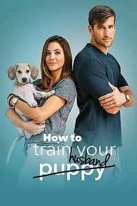 Download How to Train Your Husband (2018) Full Movie In (Hindi-English) 480p [300MB] || 720p [1GB]